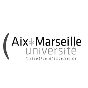 Institut Université de Aix Marseille