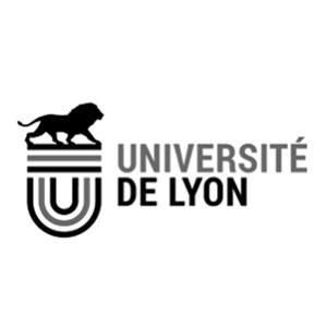 Intitut université de lyon